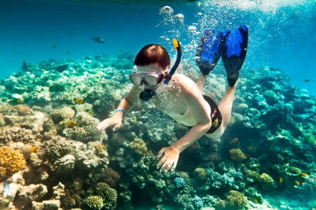 Diving-to-see-coral-reefs-in-Hon-Dai